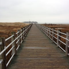Photo taken at Silver Sands State Park Boardwalk by Chris W. on 12/6/2011