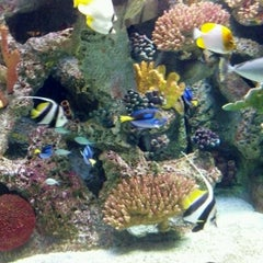 Photo taken at Primate, Cat & Aquatics Building by David K. on 7/23/2012