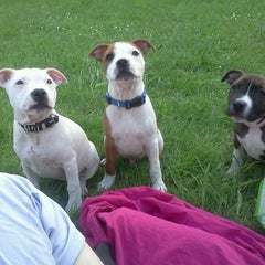 Photo taken at Canal Walkies by Leanne D. on 7/11/2011