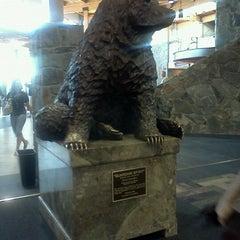 Photo taken at Bozeman Yellowstone International Airport (BZN) by Jacob F. on 9/15/2011