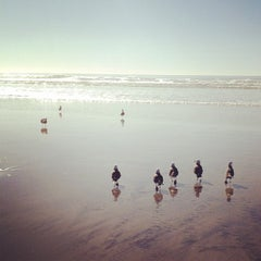 Photo taken at Black's Beach by Penny K. on 2/10/2012