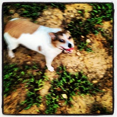 Photo taken at Oakhurst Dog Park by Hector A. on 9/1/2012