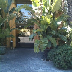 Photo taken at Huerto del Cura by Yolanda L. on 4/15/2012