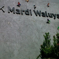 Photo taken at TK Mardi Waluya by asticha a. on 11/26/2011