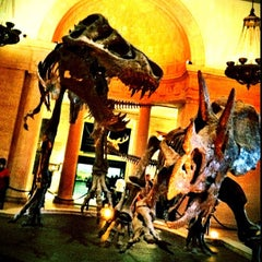 Photo taken at Natural History Museum of Los Angeles County by @cfnoble on 11/6/2011