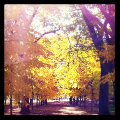 Photo taken at Grant Park by Vithida S. on 10/30/2011