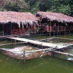Photo taken at Veg Fish Farm Thai Restaurant (菜园酒家) by Irene S. on 8/6/2012