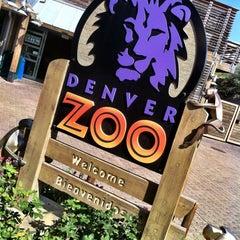 Photo taken at Denver Zoo by brandon on 7/23/2012
