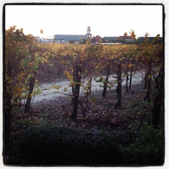Photo taken at South Coast Winery Resort & Spa by Chris V. on 11/26/2011