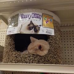 Photo taken at Pet Supplies Plus by Bridges B. on 9/1/2012