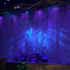 Photo taken at Nautilus Amphitheater at SeaWorld by Katie R. on 10/2/2011