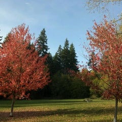 Photo taken at Big Finn Hill Park by B (HiWEB) H. on 11/8/2011