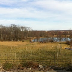 Photo taken at The Vineyard and Brewery at Hershey by Quinn on 3/10/2012