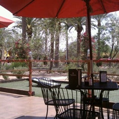 Photo taken at Wolfley's Neighborhood Grill by Lindsey S. on 5/8/2012