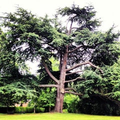 Photo taken at Fulham Palace Gardens by Ree S. on 7/1/2012