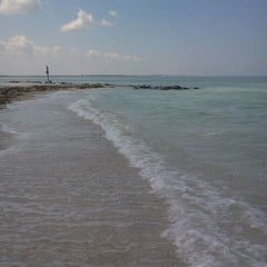 Photo taken at Caladesi Island State Park by Carrie T. on 5/23/2012