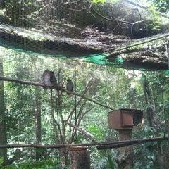 Photo taken at Zoo Taiping & Night Safari by James L. on 9/17/2011