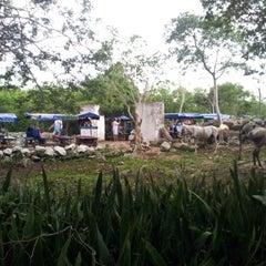 Photo taken at Los Tres Cenotes Cuzamá by Mario J. on 7/22/2012