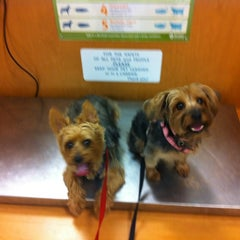 Photo taken at Banfield Pet Hospital by MoniQue on 6/13/2012