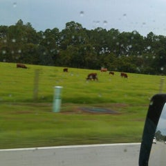 Photo taken at Cows by Adam G. on 9/23/2011