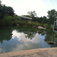 Photo taken at Austin Nature & Science Center by Matt M. on 6/17/2012