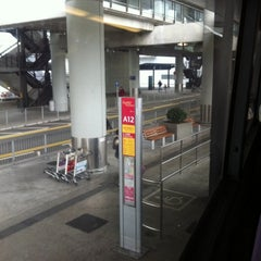 Photo taken at Airport Bus Terminus (Ground Transportation Centre)  機場巴士總站 (地面運輸中心) by 9024 b. on 3/6/2011