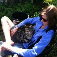 Photo taken at Flat Iron by Kathleen C. on 6/11/2012