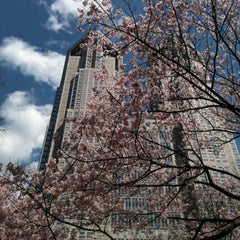 Photo taken at 新宿中央公園 (Shinjuku Central Park) by Name T. on 4/4/2012