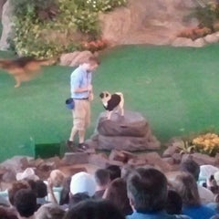 Photo taken at Animal Actors on Location! by Simone B. on 1/11/2012