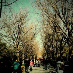 Photo taken at 雍和宫 Yonghegong Lama Temple by Meowly Tananya L. on 12/11/2011