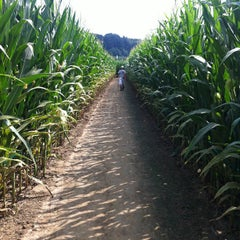 Photo taken at Cherry Crest Adventure Farm by Dave B. on 8/4/2012