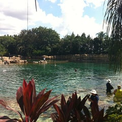 Photo taken at Discovery Cove by Kenny H. on 9/28/2011