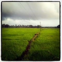 Photo taken at Goa by Schmmuck on 8/13/2012