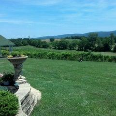 Photo taken at Veramar Vineyard by Cyndi Z. on 6/9/2012
