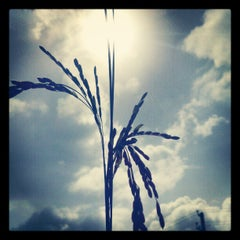 Photo taken at Goa by Schmmuck on 8/15/2012