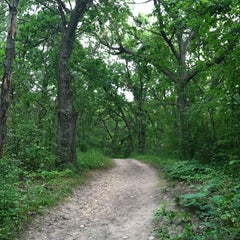Photo taken at Lapham Peak Unit, Kettle Moraine State Forest by JoAnn H. on 8/12/2012