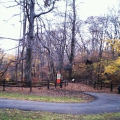 Photo taken at NYBG Forest by Thomas Z. on 11/20/2011