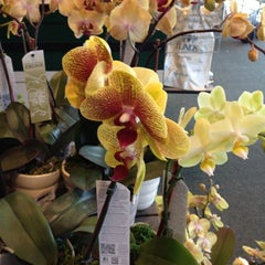 Photo taken at Lunds & Byerlys by Shandamarie S. on 3/4/2012