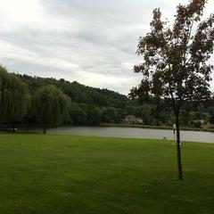 Photo taken at Plan d'Eau du Surgié by Gaelle R. on 7/16/2011