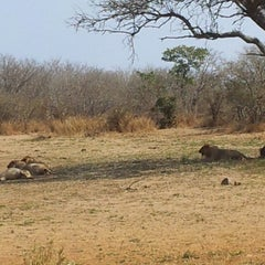 Photo taken at Olifants Rest Camp by Rosario C. on 8/28/2012