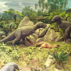 Photo taken at Dinosaurs/Hall of Paleobiology Exhibit by Emma F. on 4/19/2012