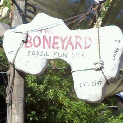 Photo taken at The Boneyard by John M. on 3/19/2012