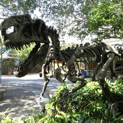 Photo taken at Zoo Miami by Brian B. on 3/3/2012
