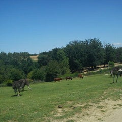 Photo taken at Safari de Peaugres by Alex D. on 7/7/2012