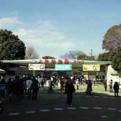 Photo taken at 上野動物園 (Ueno Zoo) by Yukihiko I. on 2/11/2012