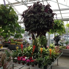 Photo taken at Pemberton Farms & Garden Center by Mark S. on 1/10/2012