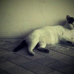 Photo taken at all seasons Bangkok Sathorn Hotel by Ton m. on 3/23/2012
