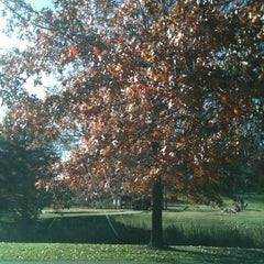 Photo taken at Sun Valley Park by Bobbie S. on 11/6/2011