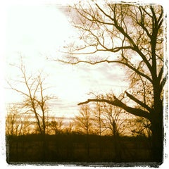 Photo taken at West Tennessee Delta Heritage Center by Tui S. on 2/24/2012