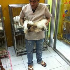 Photo taken at Cartimar Pet Center by Jan Michael I. on 7/17/2011